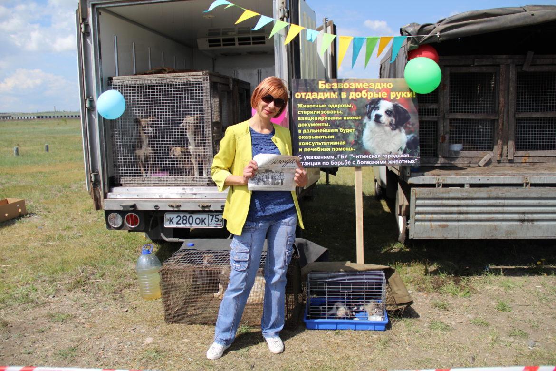 Приюты для бездомных животных Читы и Читинского района приняли участие в ярмарке забайкальской сельскохозяйственной продукции 11 июня
